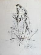 Winter Grass # 1
